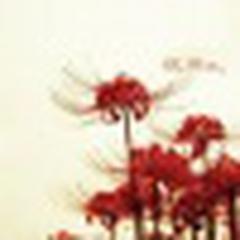 Katherine Yang's avatar