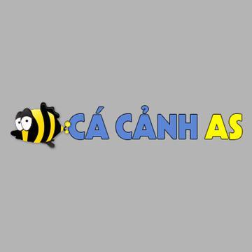 Cá Cảnh As's avatar