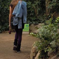 Jessica Nadine Sachs's avatar