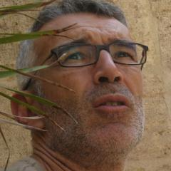 Xusto Rodriguez's avatar