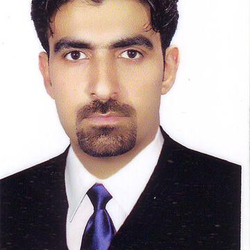 Mohammad Hossein  Hassanzadeh's avatar