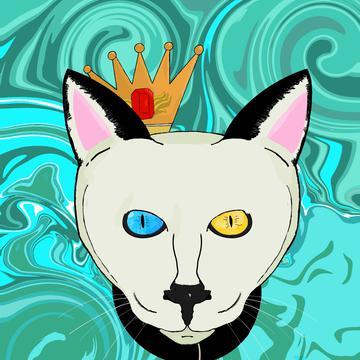 Yang  Oscar Sun's avatar
