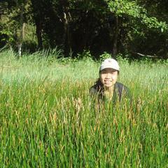 Thuy Chau Vu's avatar