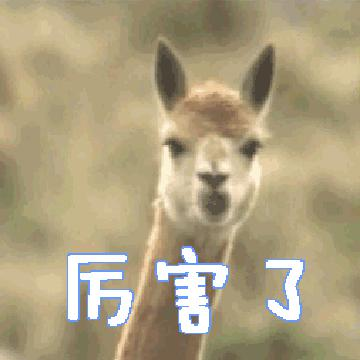 Sunny Zhou's avatar