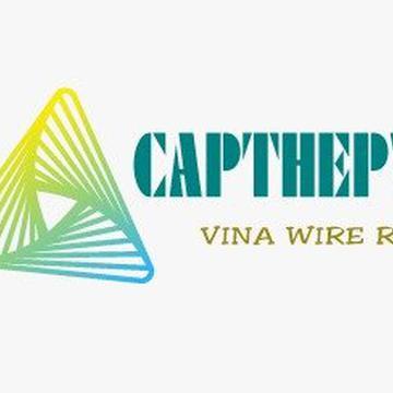 Capthepvina's avatar