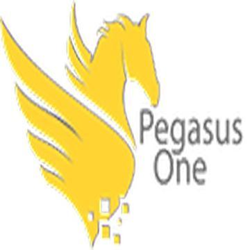 Pegasus One's avatar