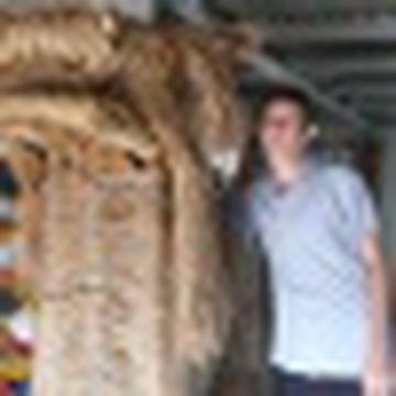 Daniel Dromboski's avatar