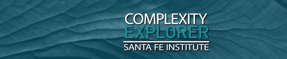 Complexity Explorer logo