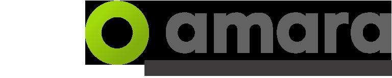 International Translation Day 2016 logo