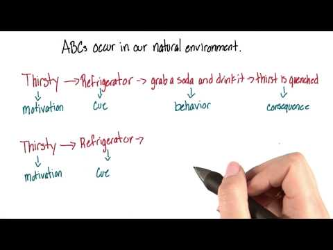 ABCs in our natural environment - Intro to Psychology thumbnail
