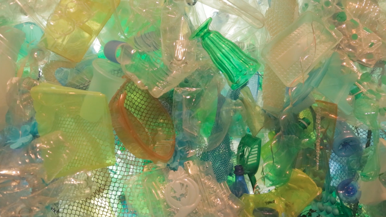 Science Today: Plastic Pollution | California Academy of Science thumbnail