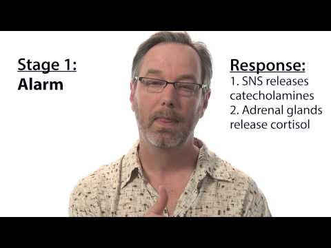 Three stages of stress response - Intro to Psychology thumbnail