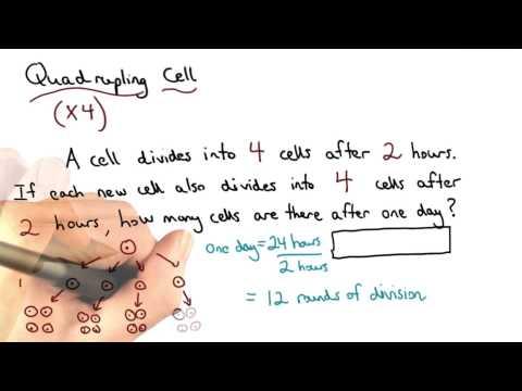 Quadrupling Cell - Visualizing Algebra thumbnail