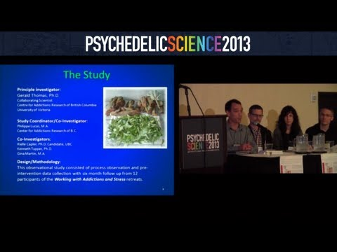 Ayahuasca-Assisted Therapy in the Treatment of Addiction in a Canadian First Nations Band thumbnail