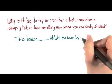 Effect of stress on memory - Intro to Psychology thumbnail