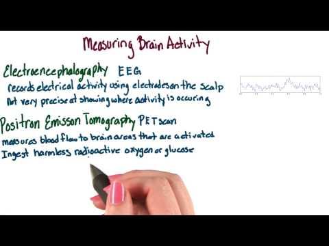 Methods of brain imaging thumbnail