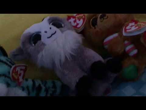 Southcook Enterprises's videos | Amara