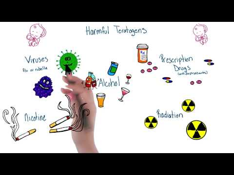 Harmful teratogens - Intro to Psychology thumbnail