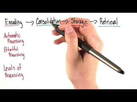 Four steps recap - Intro to Psychology thumbnail