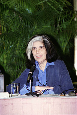 Susan Sontag in Conversation with Muriel Murch about The Volcano Lover thumbnail