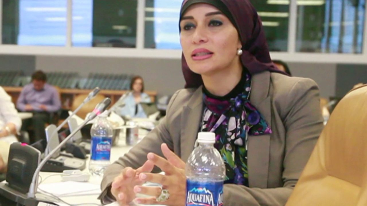 United Nations Panel on Social Media thumbnail