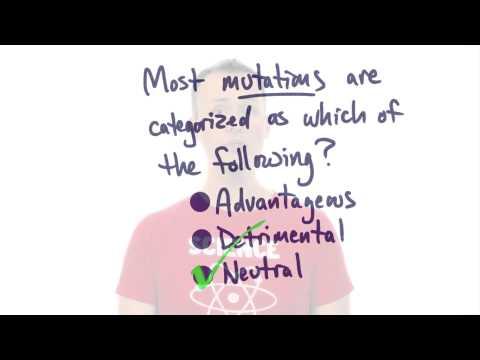 Mutations thumbnail
