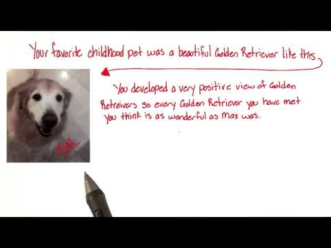 Max the golden retriever - Intro to Psychology thumbnail