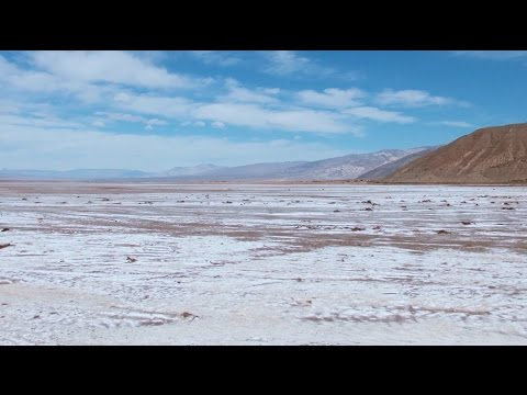 Science Today: Life on the Salt Flats | California Academy of Sciences thumbnail