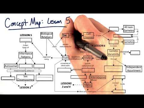 concept map 5 thumbnail