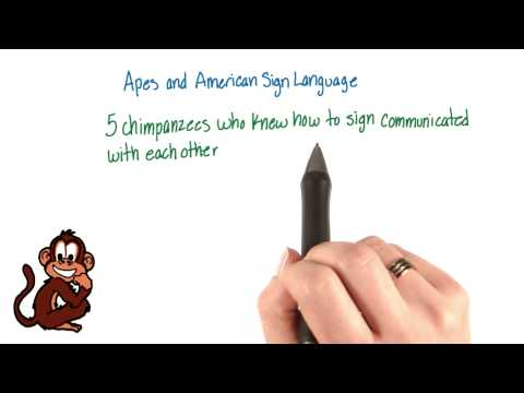 Apes and ASL - Intro to Psychology thumbnail