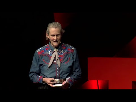 Educating Different Kinds of Minds | Temple Grandin | TEDxCSU thumbnail
