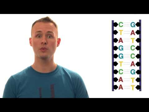 Chemistry of Life thumbnail