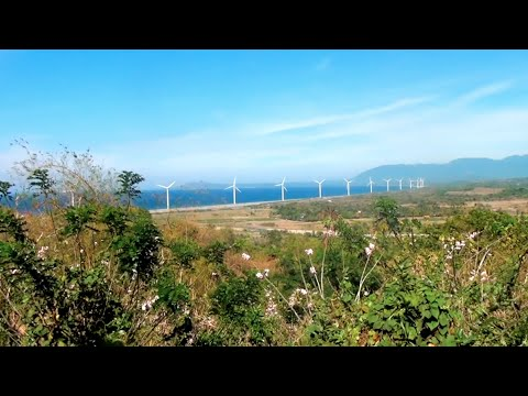 Our Clean Energy Future  | California Academy of Sciences thumbnail