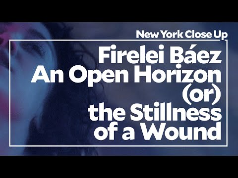 "Firelei Báez: An Open Horizon (or) the Stillness of a Wound | Art21 ""New York Close Up"" thumbnail"