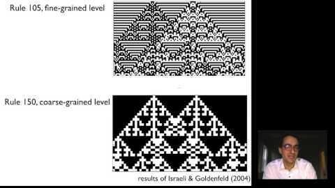 renorm 3 3 Cellular Automata Networks of Renormalization I thumbnail