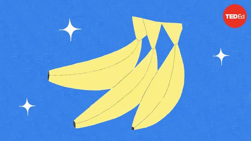 The dark history of bananas thumbnail