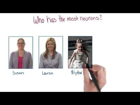 Most neurons thumbnail