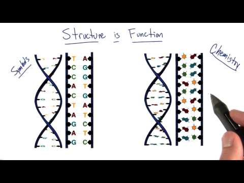 Structure is Function thumbnail