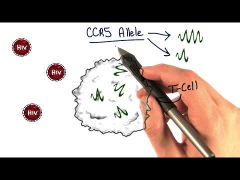 CCR5 thumbnail