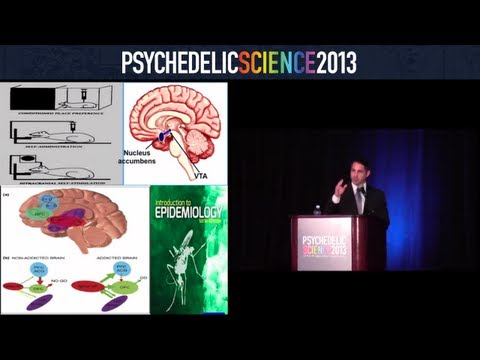 Psilocybin, Addiction, and End of Life - Stephen Ross thumbnail