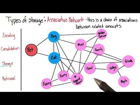 Associative network - Intro to Psychology thumbnail