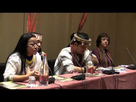 "Mesa de dialogo ""desafíos para la Amazonia"" con Miriam Cisneros de Sarayaku thumbnail"