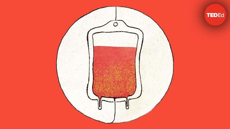 How do blood transfusions work? thumbnail