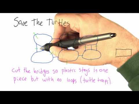 Save the Turtles - Intro to Algorithms thumbnail