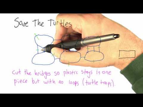 Save the Turtles - Intro to Algorithms thumbnail