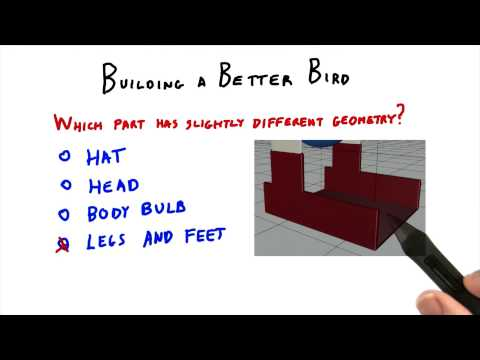 Building a Better Bird - Interactive 3D Graphics thumbnail