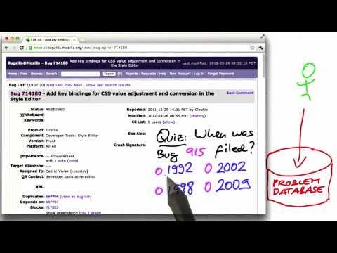 06-10 Bug Nr 915 thumbnail