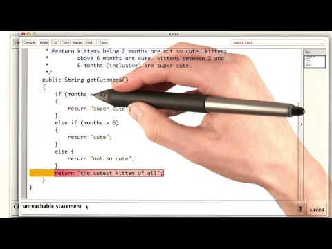The Cutest Kitten - Intro to Java Programming thumbnail