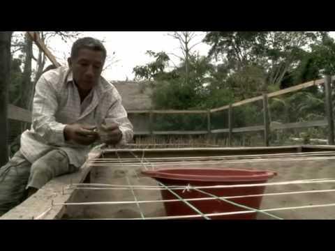 Amazonía Nuestra - Documental thumbnail
