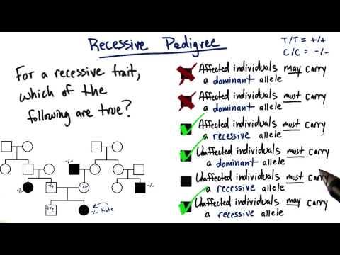 Recessive Pedigree thumbnail